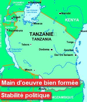 entre 2003 et 2011, 28,1% des projets d'ide en tanzanieconcernaient les